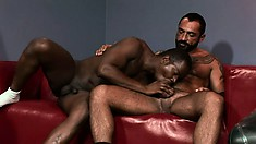 Gay homeboys in an interracial cock suck and ass fuck action scene